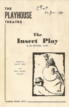 Insect Play programme